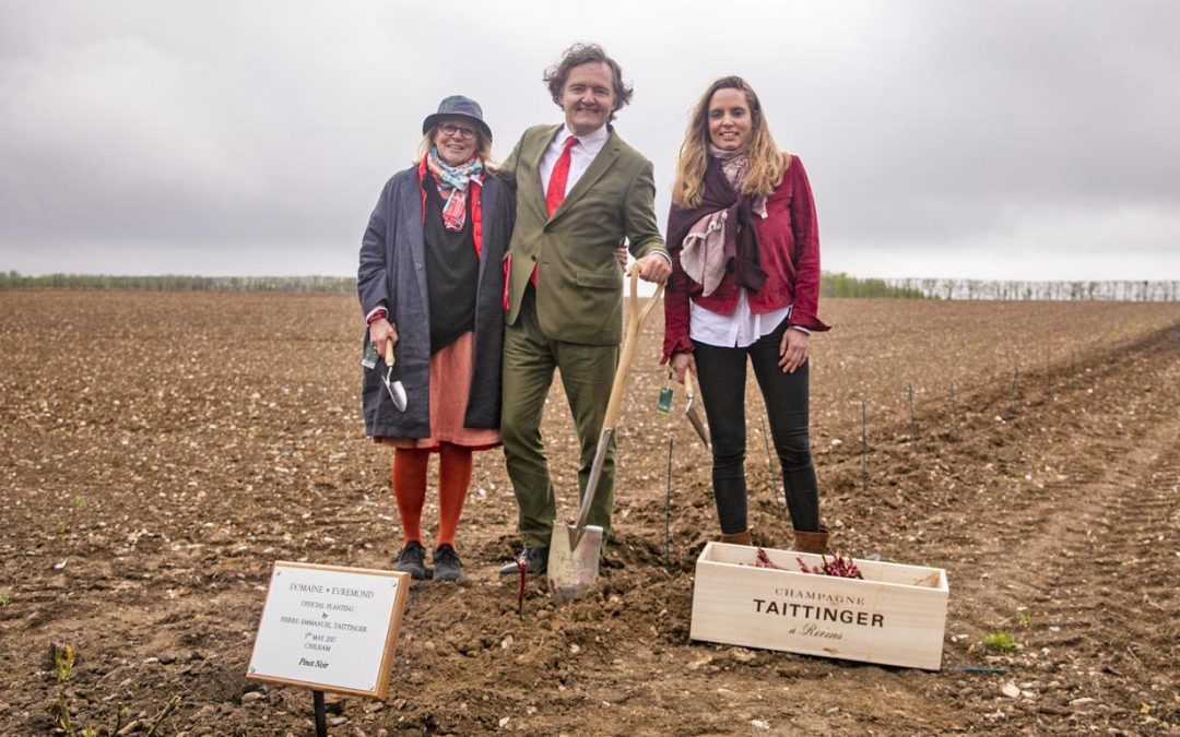 Champagne Taittinger's French planting team break first ground in Kent